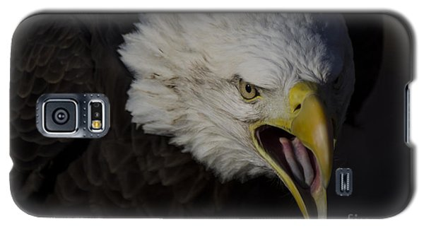 Galaxy S5 Case featuring the photograph Screaming Eagle by Andrea Silies