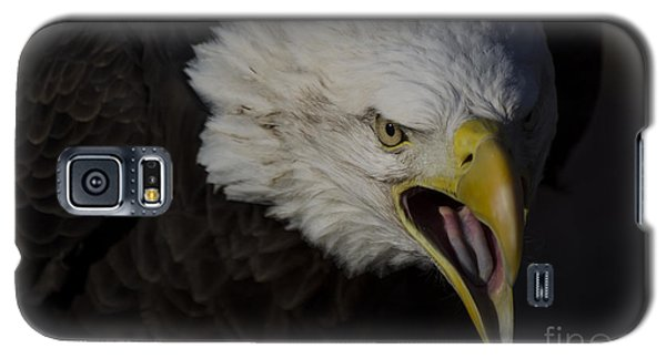 Screaming Eagle Galaxy S5 Case by Andrea Silies