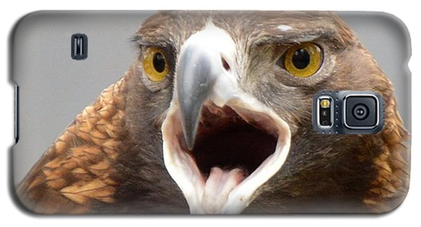 Screaming Eagle Galaxy S5 Case