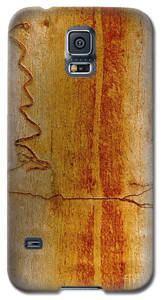 Galaxy S5 Case featuring the photograph Scribbly Gum Bark by Werner Padarin