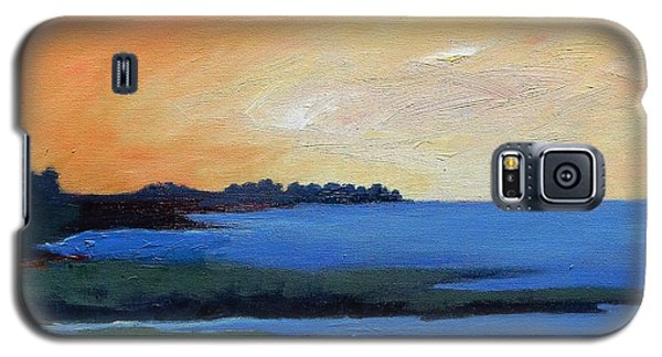 Galaxy S5 Case featuring the painting Sea And Sky by Gary Coleman