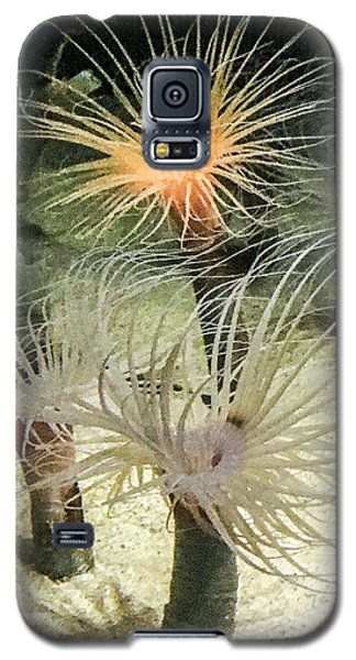 Sea Flower Galaxy S5 Case