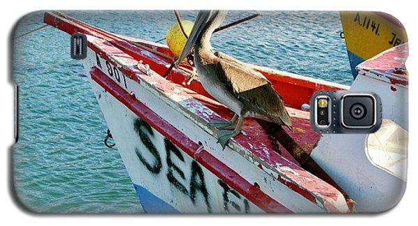 Sea Fly 1, Aruba Galaxy S5 Case
