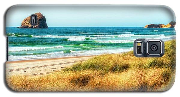 Sea-grass Dunes Galaxy S5 Case