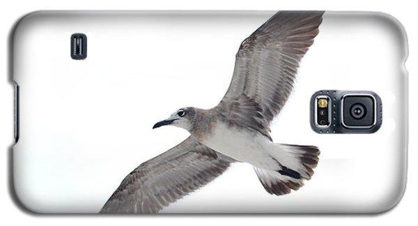 Sea Gull Galaxy S5 Case
