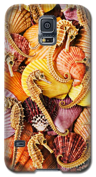 Sea Horses And Sea Shells Galaxy S5 Case by Garry Gay