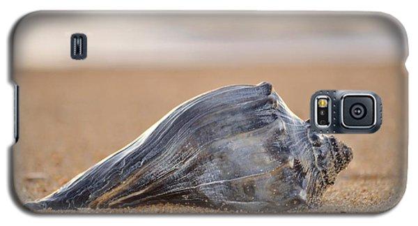 Sea Life Galaxy S5 Case