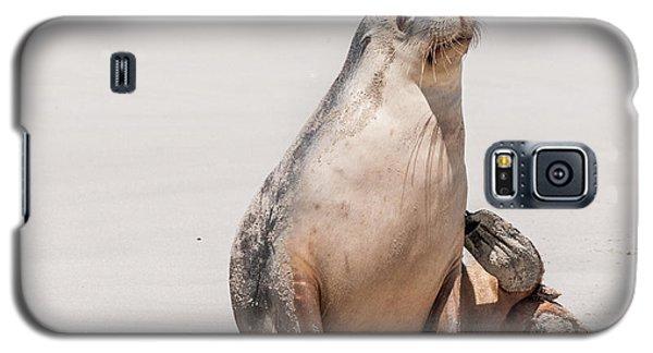 Sea Lion 1 Galaxy S5 Case