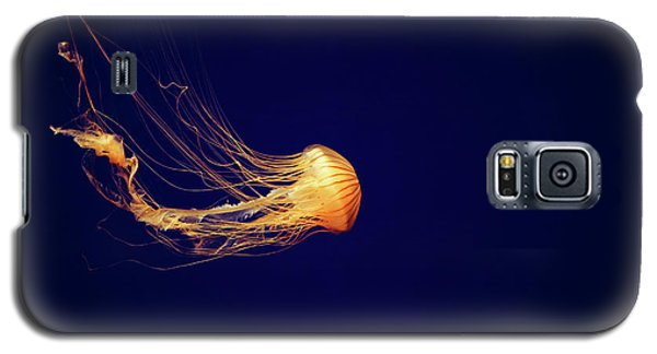 Sea Nettle Dance Galaxy S5 Case