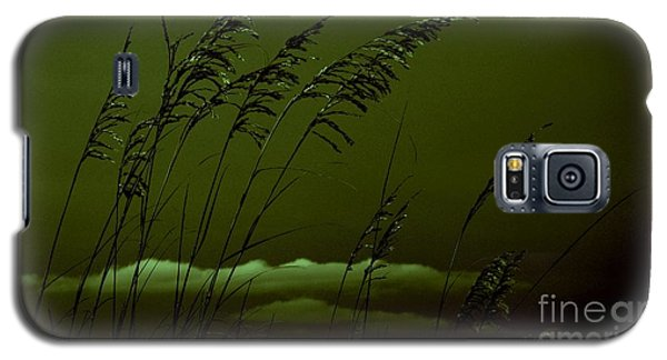 Sea Oat And Clouds Galaxy S5 Case by Janice Spivey