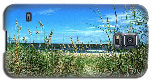 Sea Oat Dunes 11d Galaxy S5 Case