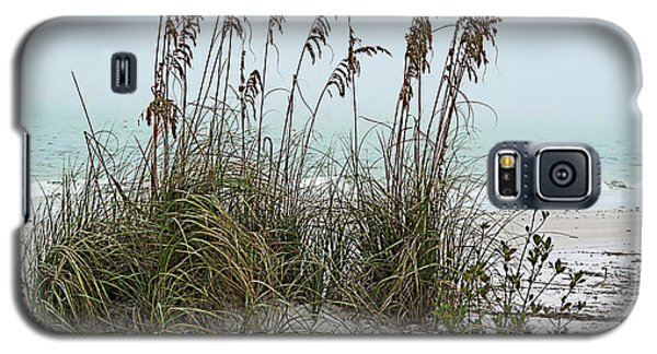 Sea Oats In Light Fog Galaxy S5 Case