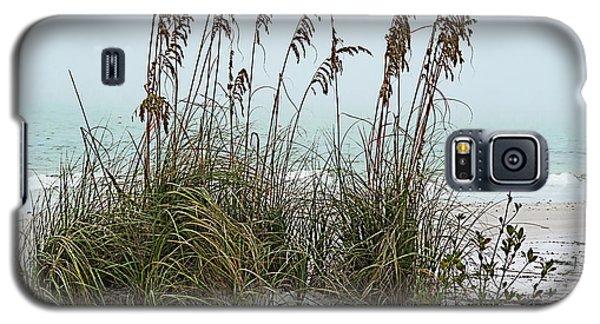 Sea Oats In Light Fog Galaxy S5 Case