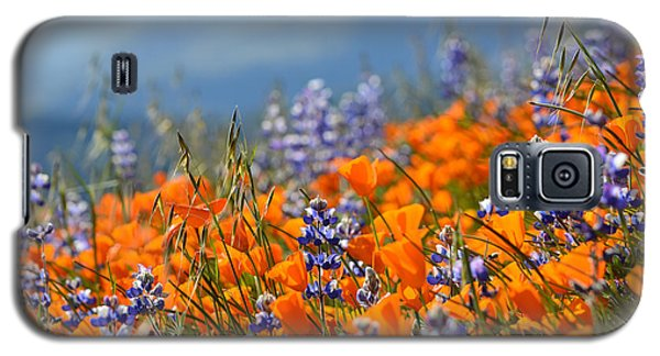 Sea Of California Wildflowers Galaxy S5 Case by Kyle Hanson