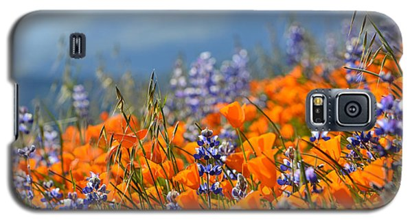 Sea Of California Wildflowers Galaxy S5 Case