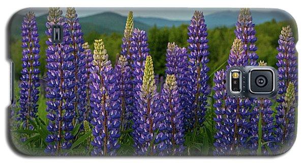 Sea Of Purple Galaxy S5 Case