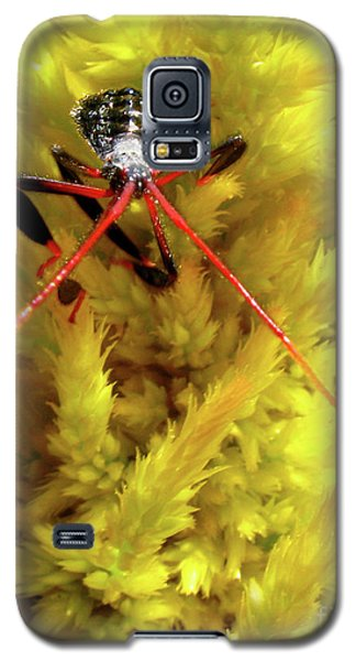Galaxy S5 Case featuring the photograph Sea Of Yellow by Donna Brown