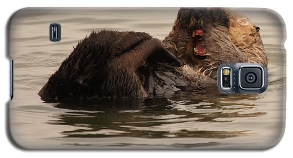 Galaxy S5 Case featuring the photograph Sea Otter Giving A Shocked Expression by Max Allen