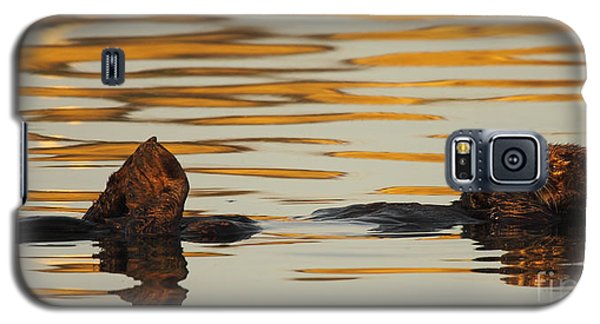 Galaxy S5 Case featuring the photograph Sea Otter Laying Low In The Water by Max Allen