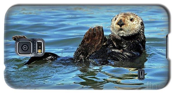 Sea Otter Primping Galaxy S5 Case