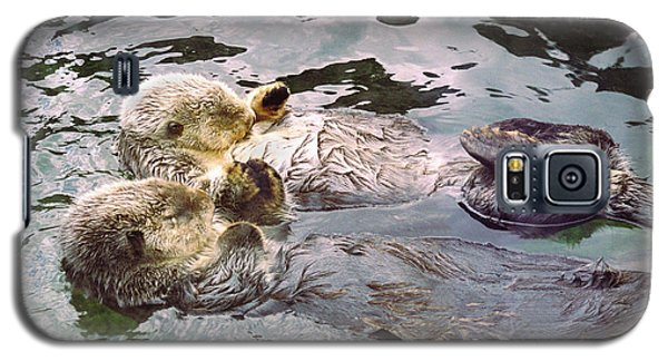 Sea Otters Holding Hands Galaxy S5 Case by BuffaloWorks Photography