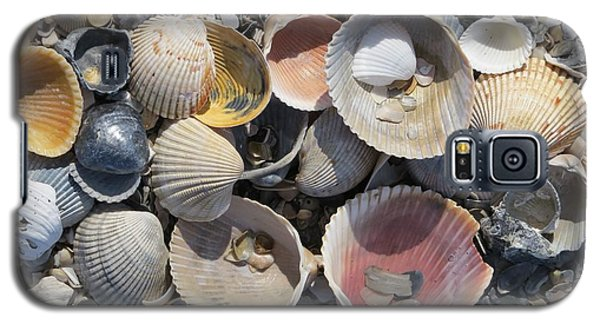 Sea Shell Mozaic Galaxy S5 Case