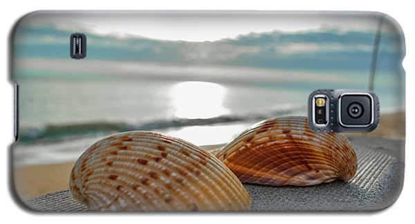 Sea Shells Galaxy S5 Case by Josy Cue