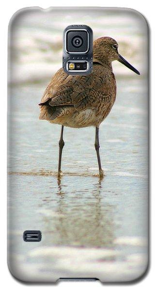 Sea Shore Stroller Galaxy S5 Case
