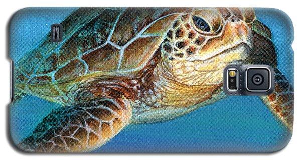 Sea Turtle 1 Of 3 Galaxy S5 Case