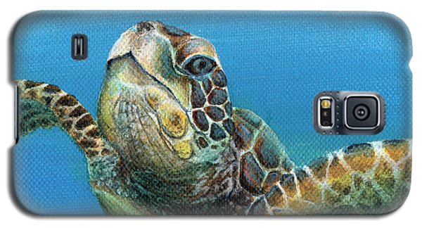 Sea Turtle 3 Of 3 Galaxy S5 Case
