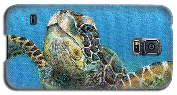 Sea Turtle 3 Of 3 Galaxy S5 Case