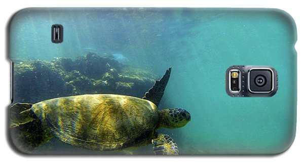 Galaxy S5 Case featuring the photograph Sea Turtle #5 by Anthony Jones