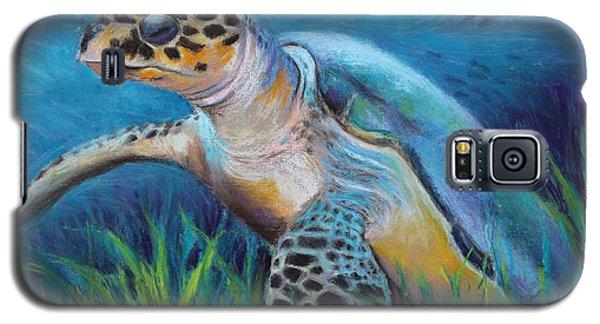 Sea Turtle Cove Galaxy S5 Case