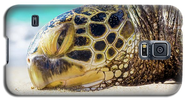 Sea Turtle Resting At The Beach Galaxy S5 Case