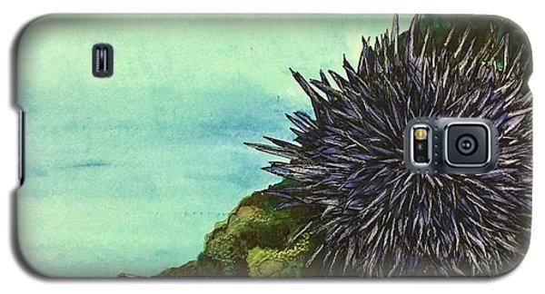 Sea Urchin   Galaxy S5 Case