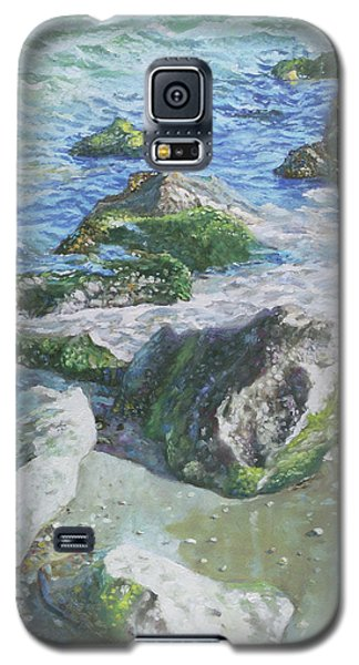 Galaxy S5 Case featuring the painting Sea Water With Rocks On Shore by Martin Davey
