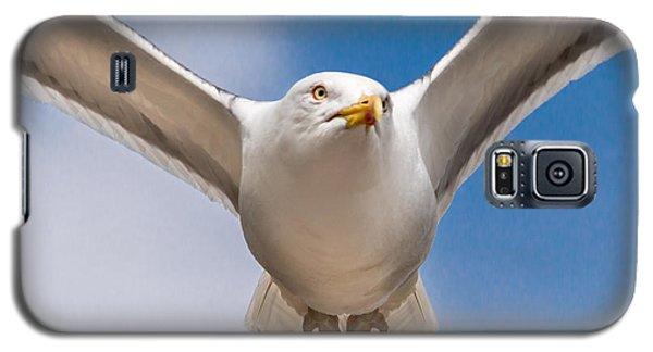 Seabird Closeup Galaxy S5 Case
