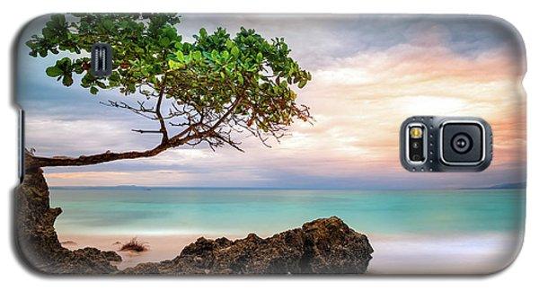 Seagrape Tree Galaxy S5 Case