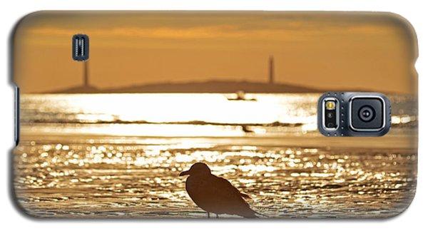 Seagull Admiring Thacher Island Gloucester Ma Good Harbor Beach Galaxy S5 Case