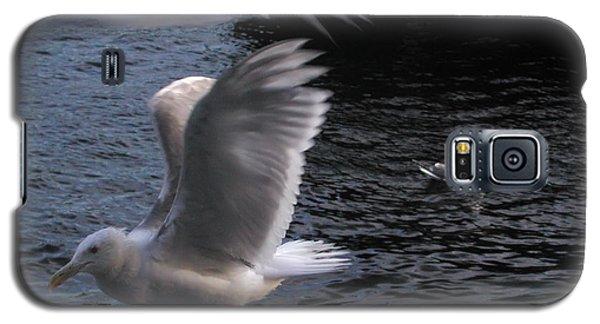 Seagull Circus Galaxy S5 Case