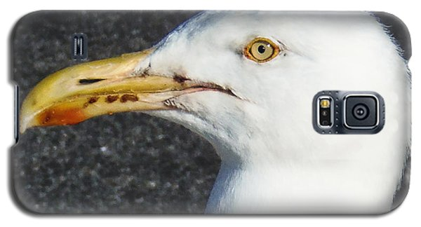 Seagull Head Galaxy S5 Case