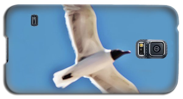 Seagull In Flight Galaxy S5 Case