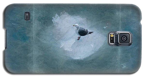 Seagull On Iceflow Galaxy S5 Case by Victoria Harrington