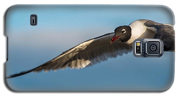 Seagull Portrait In Flight Galaxy S5 Case