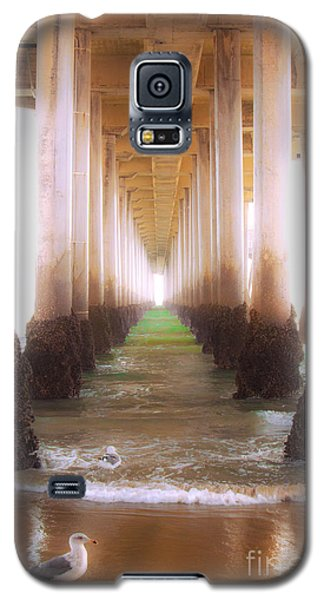 Galaxy S5 Case featuring the photograph Seagull Under The Pier by Jerry Cowart