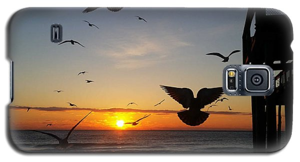 Seagulls At Sunrise Galaxy S5 Case