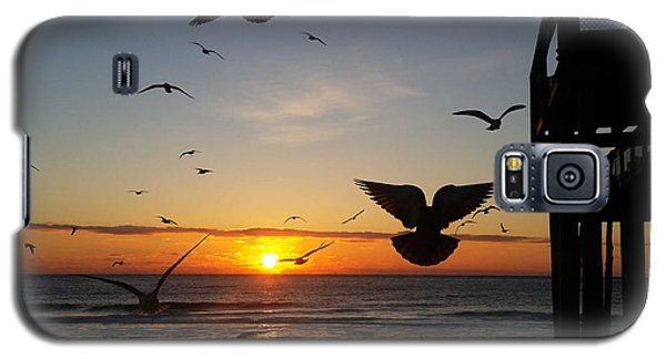 Seagulls At Sunrise Galaxy S5 Case by Robert Banach