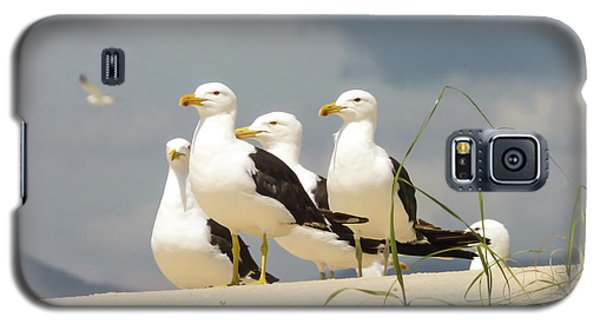 Seagulls At The Beach Galaxy S5 Case