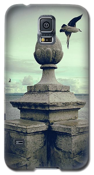 Galaxy S5 Case featuring the photograph Seagulls In Columns Dock by Carlos Caetano