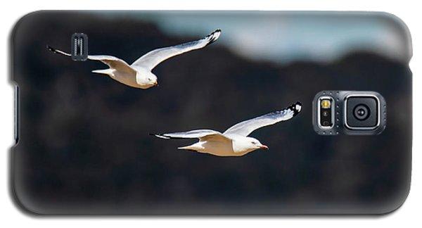 Seagulls In Flight Galaxy S5 Case